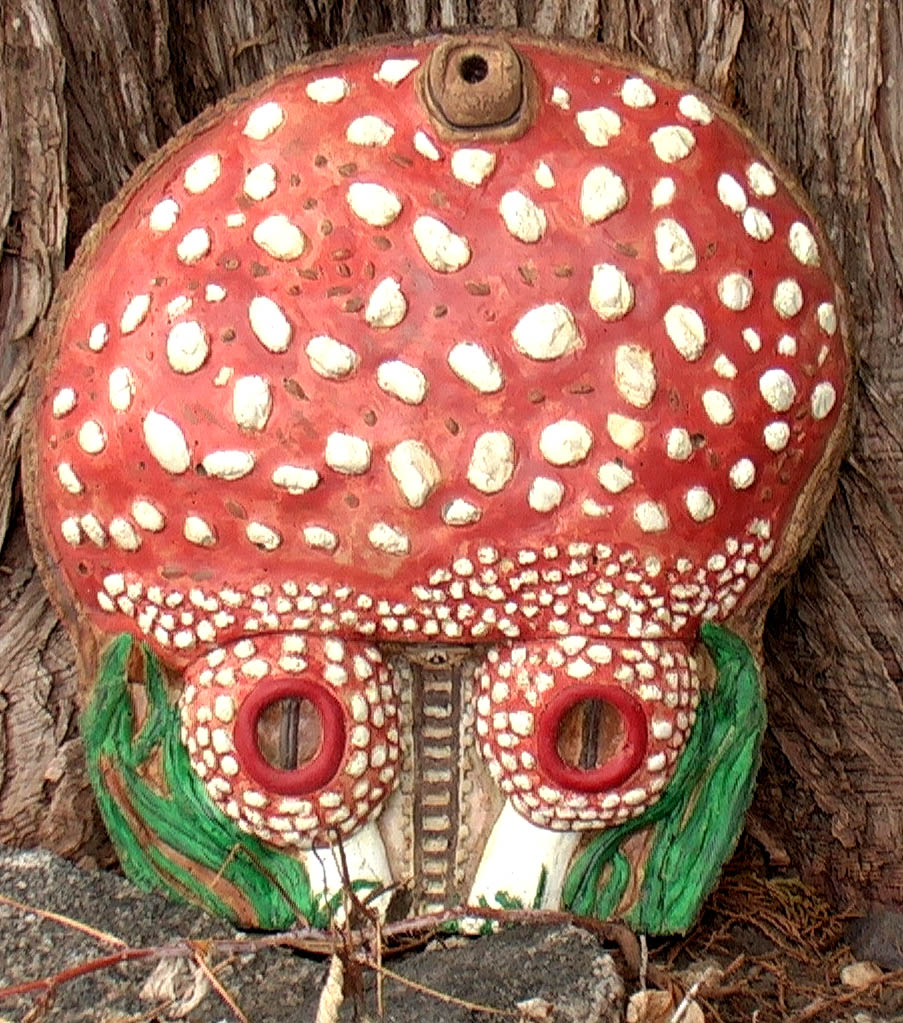 toadstool pic